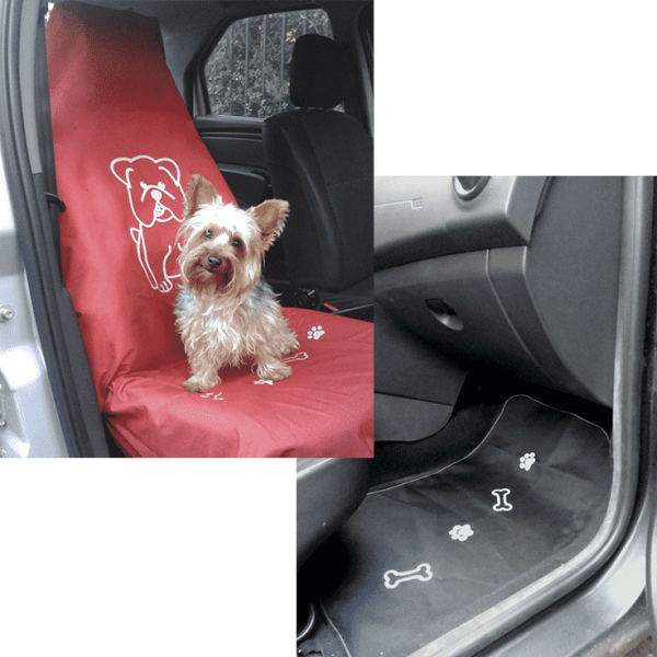 Kit de Silla Copiloto + Tapete de Copiloto